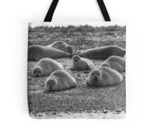 Seals on Blakeney Point Tote Bag