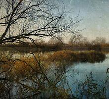 Winter on the Marsh by Sarah Jarrett