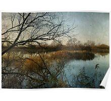 Winter on the Marsh Poster