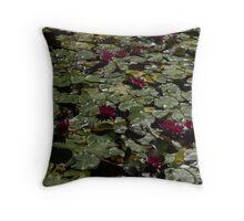 Abundance In Crimson  Throw Pillow