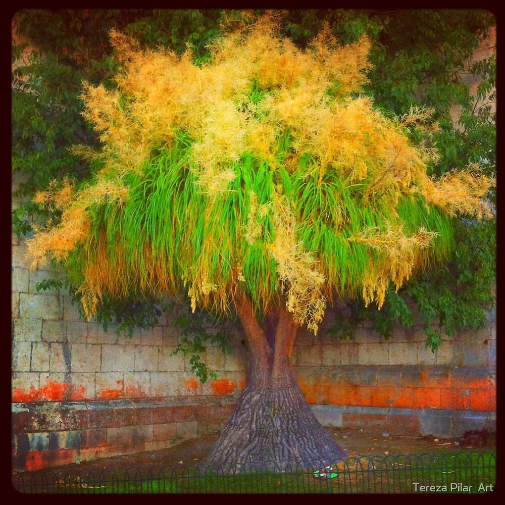 lovely tree  by terezadelpilar ~ art & architecture