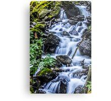 Cadair Idris Waterfall Metal Print