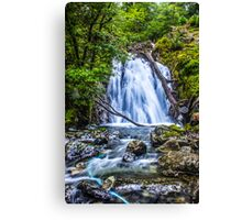 Waterfall At Cadair Idris Canvas Print
