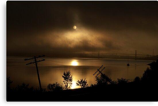 A Silent Apocalypse by Caites