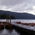 Pier onto Lake Windermere. by littleredbird