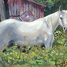White Horse by COusley622