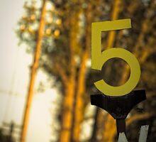 5 by Nicola Smith