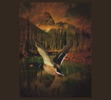 rustic mountain landscape lakeview wild duck  by lfang77
