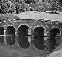The Palladian Bridge - Stourhead by Photography  by Mathilde