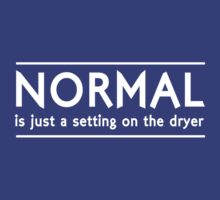 Normal is a setting on the dryer by artack