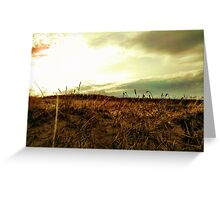 Dunes - Ogunquit, Maine Greeting Card