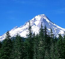 Mount Hood, Oregon by wandringeye