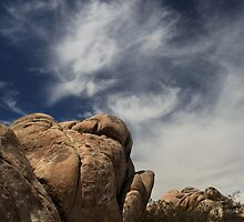The Reclining Woman by Laurie Search