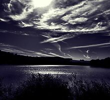 Upstate Lake- B & W by BrittneyMarie83