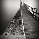 Solitude in Fog II by Peter Denniston
