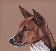 Basenji by Charlotte Yealey