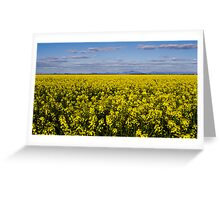 Canola fields, Millie Greeting Card