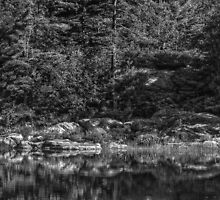 Rocks Black and White by Pete5