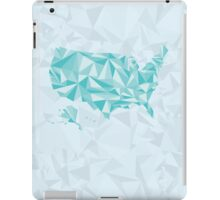 Abstract America Winter Crystal iPad Case/Skin