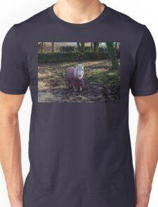 Sweet Little Pony Unisex T-Shirt