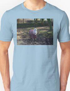 Sweet Little Pony T-Shirt