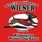 You're Either a Wiener or a Loser by Rich Anderson