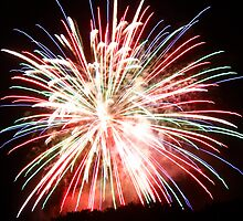 Fireworks (10) by ronnielee31x