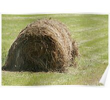 Hay Bale in a Field Poster