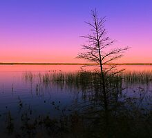 Madge Lake 9790_13 by Ian McGregor