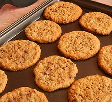 Chocolate Chip Cookies on a Pan by rhamm