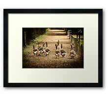 """""""Remember the Goose Girl"""" Framed Print"""