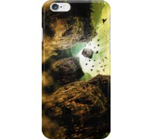 Rock and birds  iPhone Case/Skin