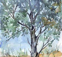 This Blue Gum by Maree  Clarkson