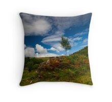 Glen Finglas autumn, Scotland Throw Pillow