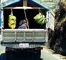 Banana Delivery In The Andes by Al Bourassa