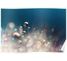 Sparkles & Drops Poster