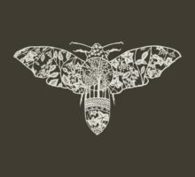 Moth Paper-Cut by thethinks