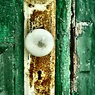 The Green Door by Sheri Nye