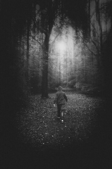 Lost in a Forest by Nikki Smith