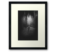 Lost in a Forest Framed Print