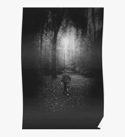 Lost in a Forest Poster