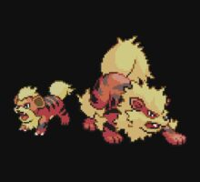 Growlithe and Arcanine by Flaaffy