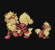 Growlithe and Arcanine V.2 by Flaaffy