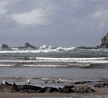 The Oregon Coast After An Afternoon Rain by Cora Wandel
