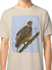 Red-tailed Hawk On Branch Classic T-Shirt