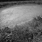 In any Field 2 by Glen O'Malley