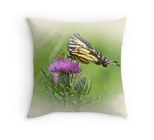 Oh What A Beautiful Day Throw Pillow