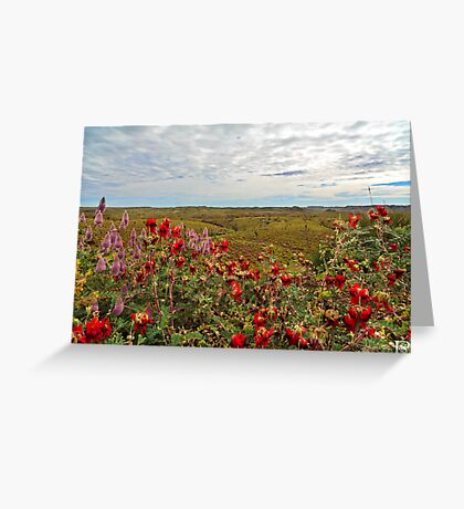 Millstream ~ Chichester National Park Greeting Card