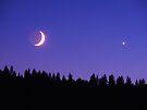A Lunar Venus by BettyEDuncan