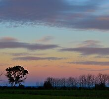 Dusk over the Lowlands by Sally Murray